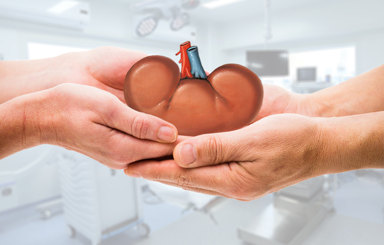 Is Kidney Transplant Safe?